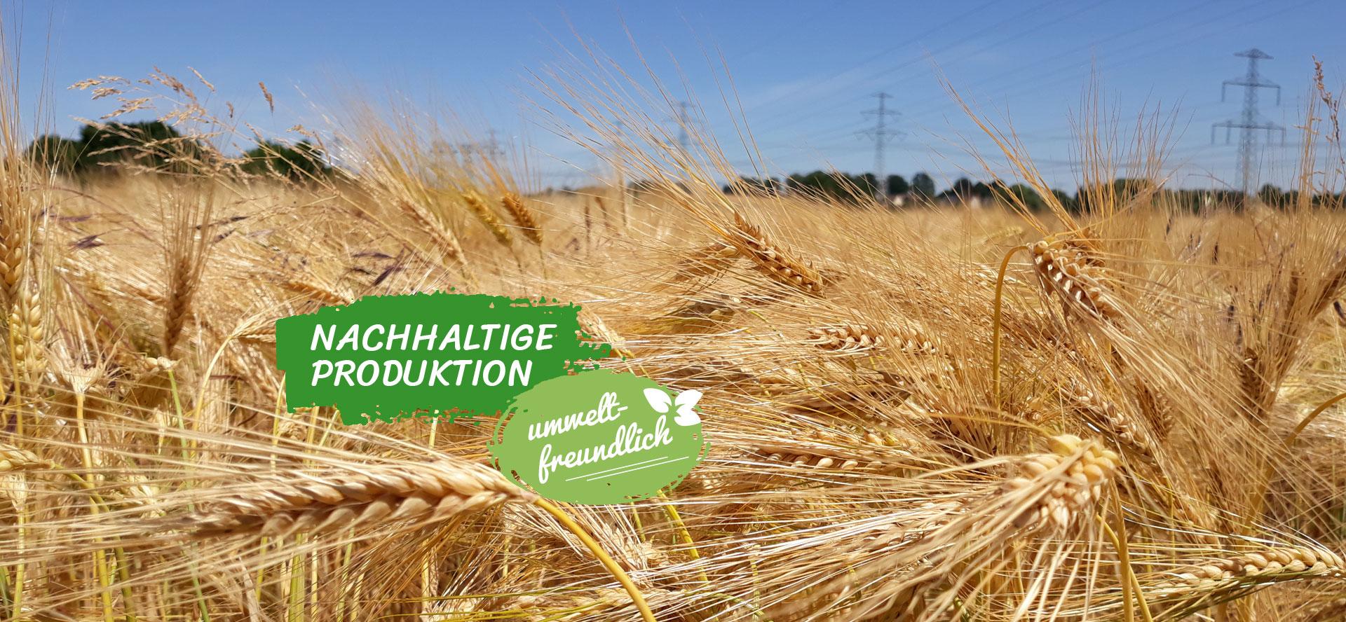 Nachhaltige Produktion